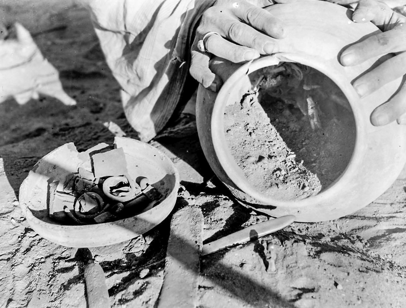 Figure 9, the crock of gold discovered during the 1930-31 season (EES TA30.31.024)